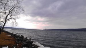 nearby tree and distant power plant on Cayuga Lake